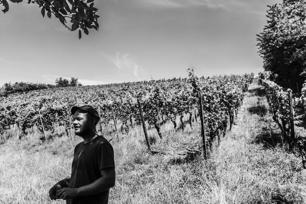 Industriefotografie im Weinbau